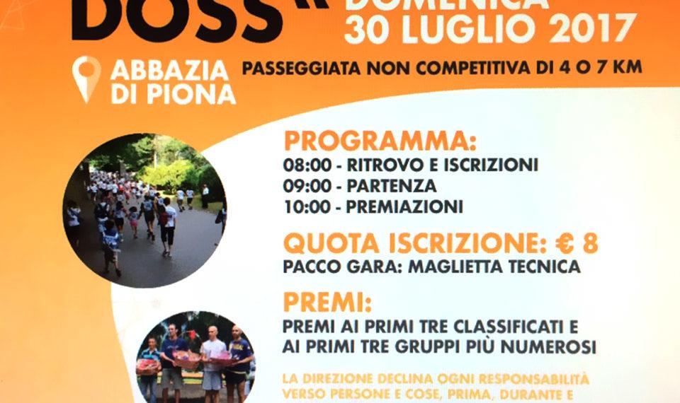 Phyto Garda on tour: in Puglia, Piemonte, Lombardia e Sicilia