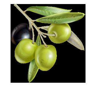 lederme crema lenitiva forte con olio extravergine di oliva